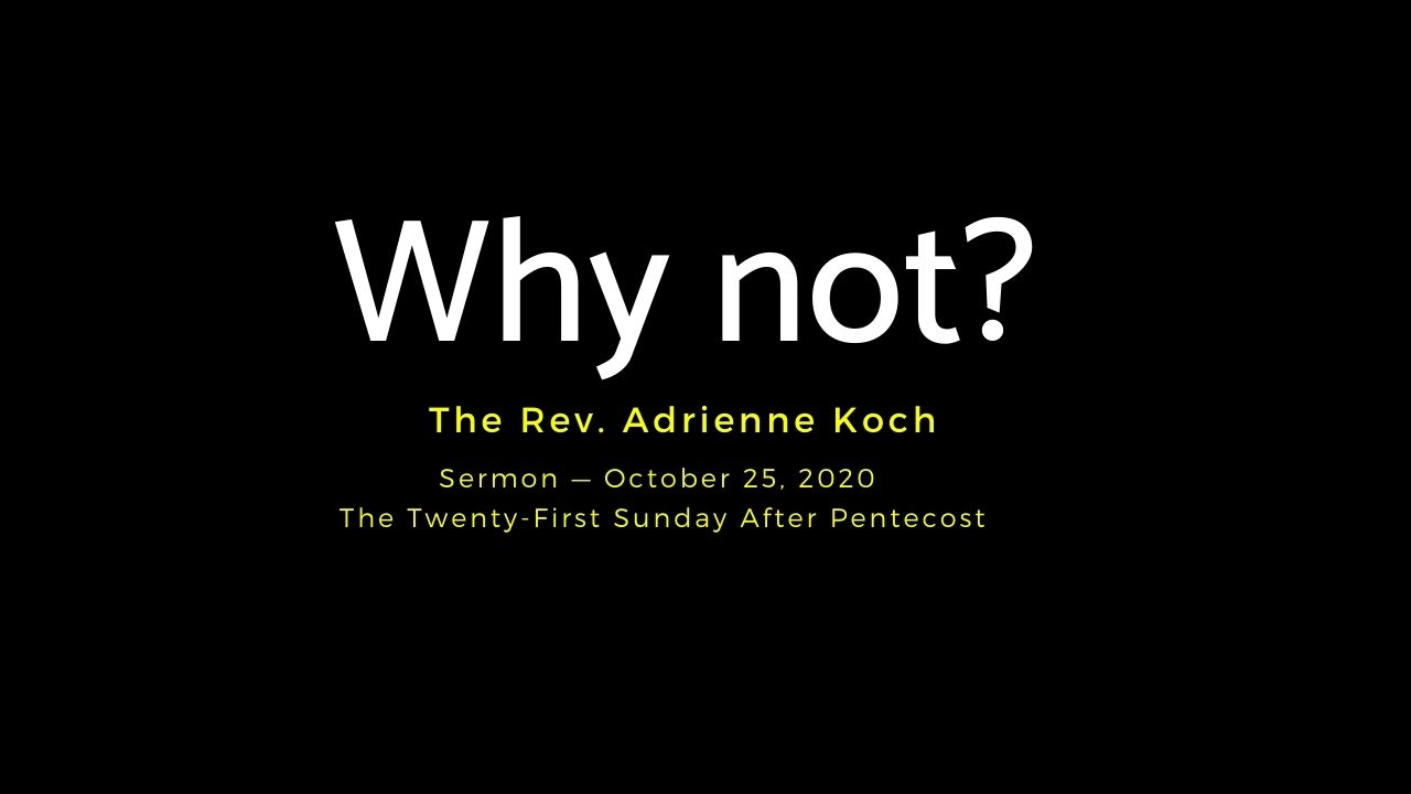 Video Sermon: Why Not?