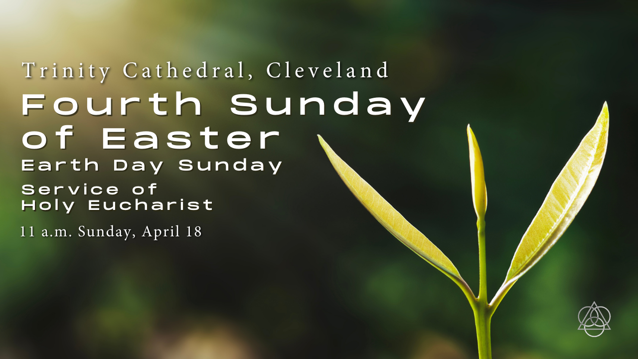 Holy Eucharist: The Fourth Sunday of Easter