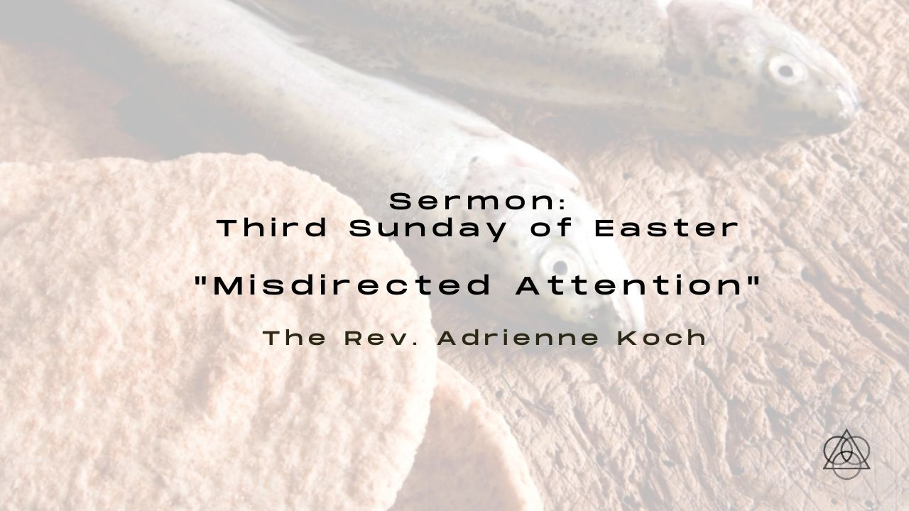 """Sermon Podcast: """"Misdirected Attention"""""""